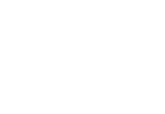 Digital Competences
